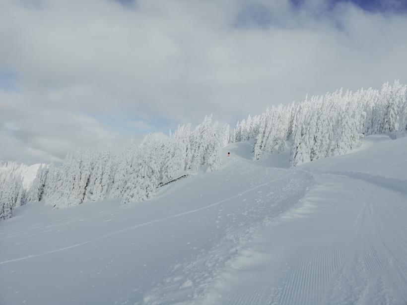 Skifahren ski amade