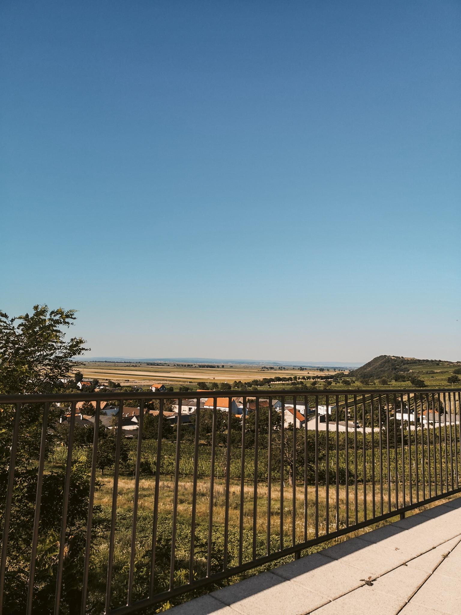 Jois Neusiedlersee