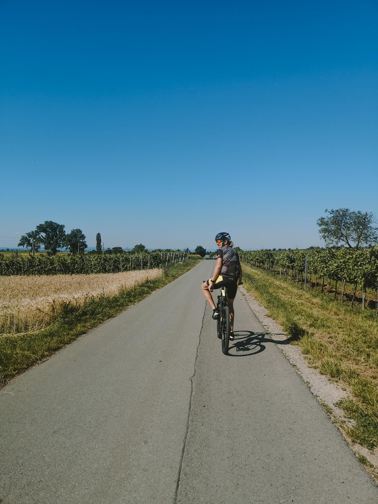 Radtour um den Neusiedlersee